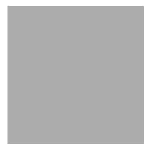 1 - FilterClean - Kohlefilter = KF 1